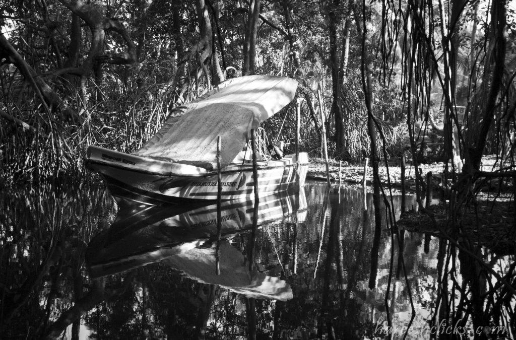 Sri Lanka marsh land, backwater boat,