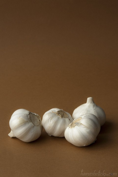 Garlic still life photography