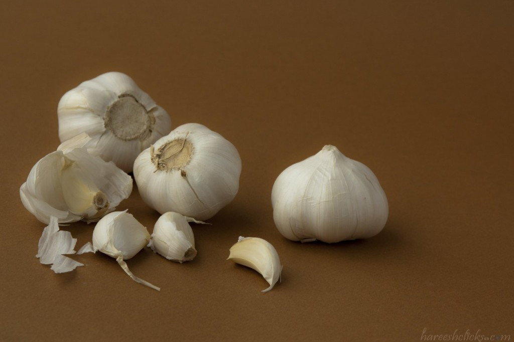Garlic, still life photography