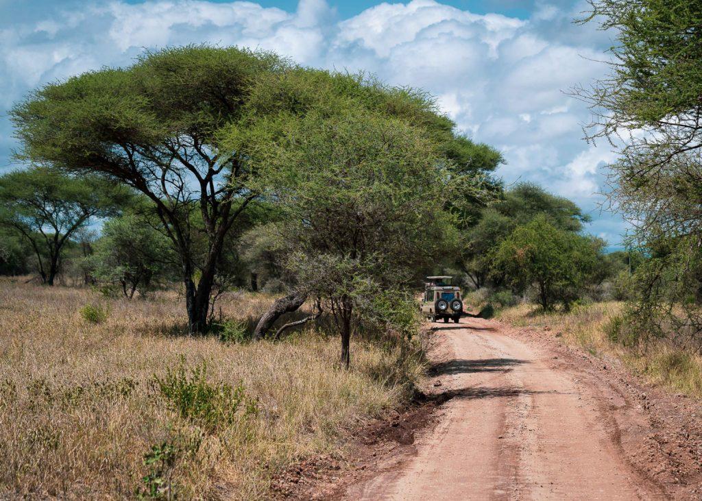 Safari jeep driving through Tarangire national park